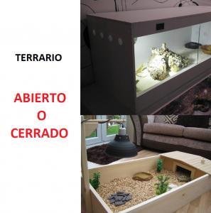 terrario abierto o cerrado para reptiles ventilacion