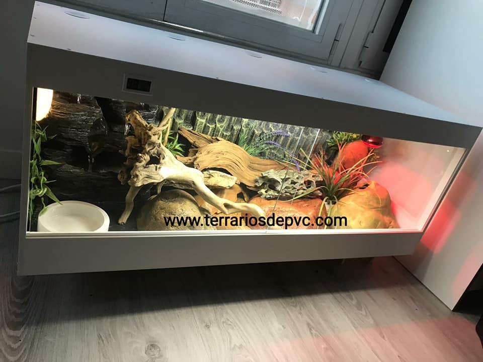 terrario pvc pogona completo para reptiles